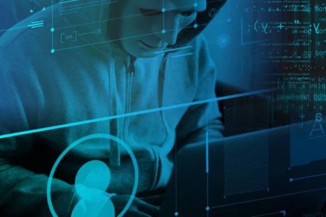 ჰაკერმა მოიპარა 8.2 ათასზე მეტი მონაცემთა ბაზა უსაფრთხოების კომპანია Night Lion Security-სგან