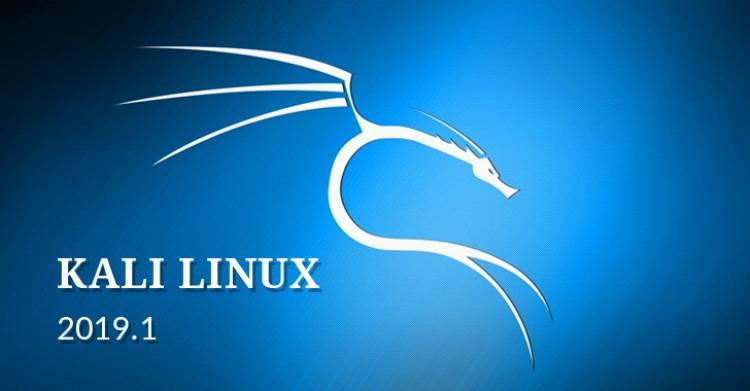 Kali Linux 2019.1 რეალიზებულია - ოპერაციული სისტემა ჰაკერებისთვის